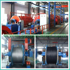 AAAC Wire and AAAC Cable to ASTM B399 with All Aluminum Alloy Conductor pictures & photos
