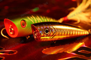 Fishing Lure--Classic Plastic Popper Lure (HMAQ60-70) pictures & photos