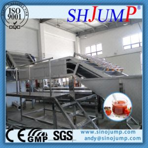 Tropical Fruit Sorting Machine/ Food Machine for Fruit Puree pictures & photos
