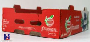 Good Quality Color Printing Environmental Fruit Tray Box pictures & photos
