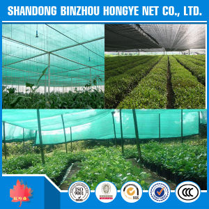 High Quality Sun Shade Net/Greenhouse Shade Net/Black Shade Net for Covering Modern Green House pictures & photos