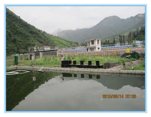 Integrated Wastewater Treatment Equipment (machine) pictures & photos
