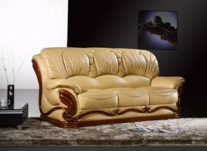 Classic Leather Sofa Wooden Frame (CW00203)