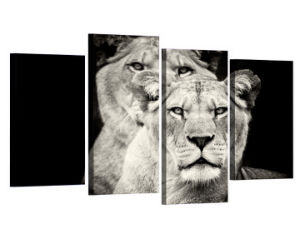 HD Printed 4PCS Black and White Lion Painting on Canvas Room Decoration Print Poster Picture Canvas Framed Mc-146 pictures & photos