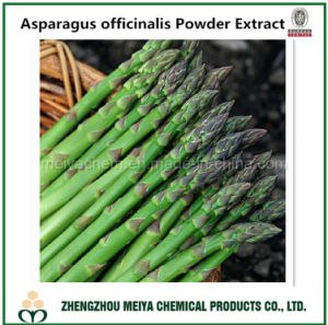 100% Natural Asparagus Officinalis Powder Extract for Hot Sale pictures & photos