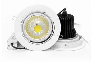 12W 20W 30W LED Down Light with CE EMC pictures & photos