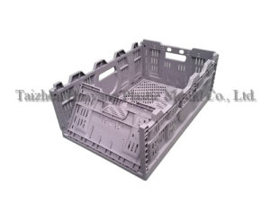 Plastic Foldable Crate Mould (HY147) pictures & photos