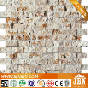 Stone Mosaic for Outdoor (S1424010) pictures & photos
