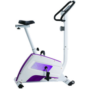 2015 New Magnetic Upright Bike Indoor Fitness Exercise 98000