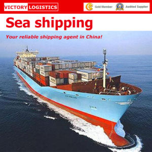 Sea Shipping, Warehouse Storage, Customs Clearance, Shipping Agent (sea shipping) .