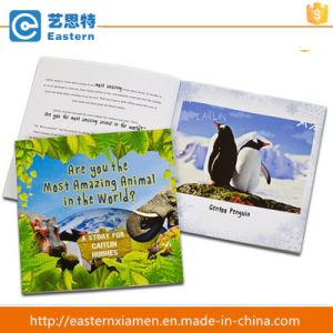 Professional Paper Printing Child Book