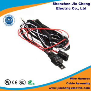OEM ODM RoHS Wire Loom Cable Assembly pictures & photos