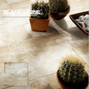 600X600 Cement Series Rusitc Tile for Floor or Wall (BGDMA66250) pictures & photos
