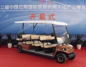 Electric 11 Seaters Sightseeing Car (LT-A8+3)