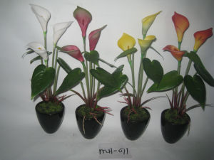 China Fake Silk Calla Lily Artifical Flowers With Pot Mh 071