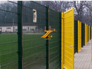 Welded Wire Mesh Fencing (TS-WWMF01) pictures & photos