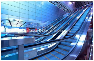 Indoor Escalator with 30 Degree 800mm Step Width pictures & photos
