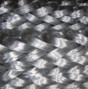 Galvanzied Iron Wire (galvanzied & PVC coated) pictures & photos