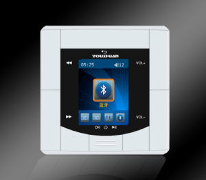 Background Music System Multiroom Music in Wall Music Panel (YZ-50B)