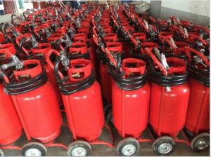 Fire Extinguishers  (MFZ(L)50) pictures & photos
