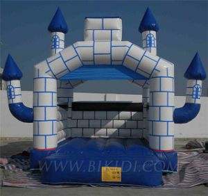 Outdoor Inflatable Jumping Castles (B1059) pictures & photos