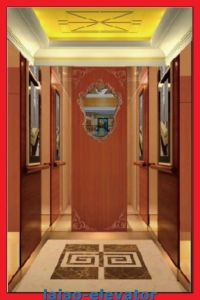 Good Decoration Low Price Observation Elevator & Passenger Lift pictures & photos