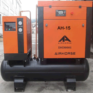 Air Dryer&Tank Combined Rotary Compressor with Filters pictures & photos