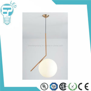 New Indoor Light, Cosmos Pendant Light, LED Decorative Lamp