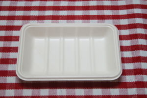 Biodegradable Disposable Tray (HR-23)