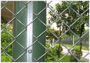 Chain Link Fence with Diamond Hole