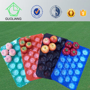 Vacuum Formed Blister Packaging PP Fresh Produce Display Tray for Fresh Fruit pictures & photos