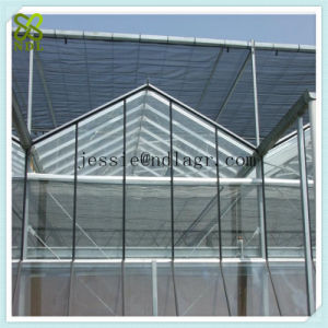 Double Layers Glass Panel Green House