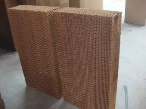 Evaporative Cooler Media Pads pictures & photos