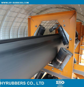 China Supplier Sample Worldwide Conveyor Belt pictures & photos