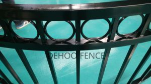 Ce/SGS Gloss Black Quality Cambered Protective and Decorative Balcony Fence pictures & photos
