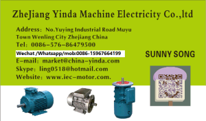 Ycl Series Single Phase Capacitor Start and Run Electric Motor pictures & photos