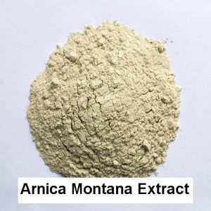 10: 1 USP Arnica Montana Extract Powder Plant Extracts Trauma Treatment Bruise Treatment Skin Allergy Treatment pictures & photos