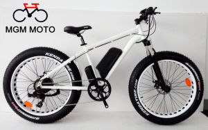 Beach Cruiser 48V 500W Big Power Fat Tire Mountain Electric Bike pictures & photos