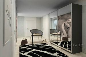 Modern Bedroom Mirror Wardrobe (HF-EY019)