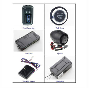 Two Ways Car Visual Smart Key System with Car Alarm, Remote Engine  Start/Stop, Pke