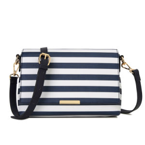 Striped Bag for Women′s Z-5015