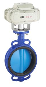 Motorized Butterfly Valve with Actuator Hl-10 pictures & photos