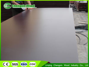 1220X2440mm Phenolic Film Faced Shuttering Plywood From Chengxin Wood