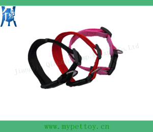 Nylone Dog Collar for Wholesale pictures & photos