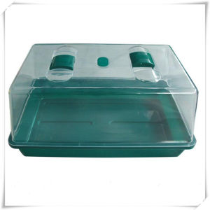 Gardening Injection Molded Seed Tray and Cover (VD16001)