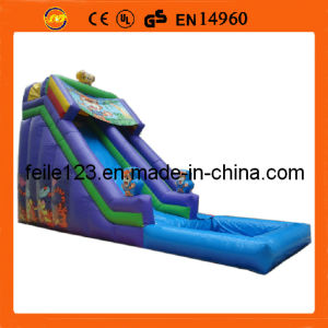 2013 Hot Selling Inflatable Slide, Inflatable Water Slide.