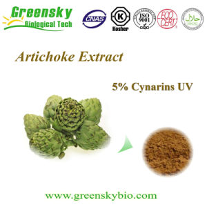5% Total Caffeoylguinic Acids Form Artichoke Extract