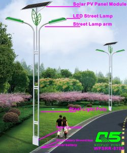 WPSRR-8702 3~15m Municipal Road Hot DIP Galvanized Steet Light Pole style pictures & photos