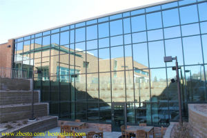 Custom Curved Window Glass Curtain Wall/Double Glazing Curtain Wall