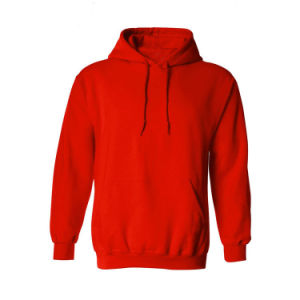 Top Quality OEM Cotton Promotional Fleece Hoodies (XY16001) pictures & photos